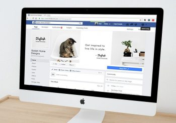 Facebook Group or Facebook Page: Which one is best for your business